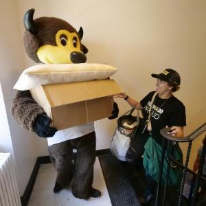CU campuses set new enrollment record
