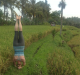 Katie Sauer practicing yoga last year in a rice field in Bali.