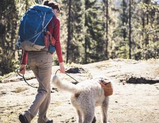 New CU Anschutz course teaches Wilderness Emergency Canine Care