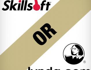 skillsoft or lynda.com
