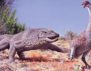 Ancient Beasts of Australia: Did humans wipe them out? To CU scientist Giff Miller, it sure looks that way