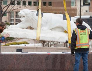 Mountain lion finds new home on El Pomar Plaza