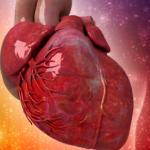 Intense light may hold answer to heart treatment dilemma