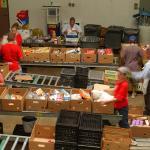 Staff volunteer at Food Bank of the Rockies