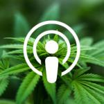 Podcast: Modern marijuana: How the bud business is changing with legalization