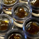 CU Boulder researchers receive state grant to study high-potency marijuana effects