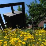 Six good reasons to take summer classes