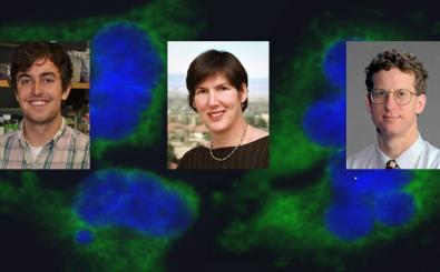 Cancer investigators, postdoc students take on aggressive disease