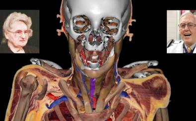 What we're learning from the Virtual Human